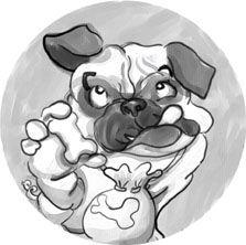 Milo the Wonderdog Series